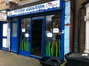 Picture of The Stow Aquarium
